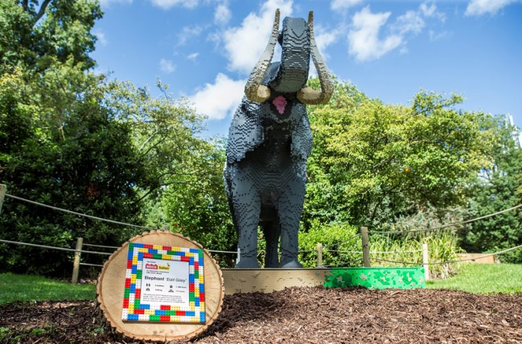 Great Brick Safari at Marwell Zoo